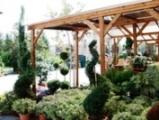 Φυτώρια ιωαννίδη» ηρακλείτου 37