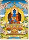 medicinebuddha-bg
